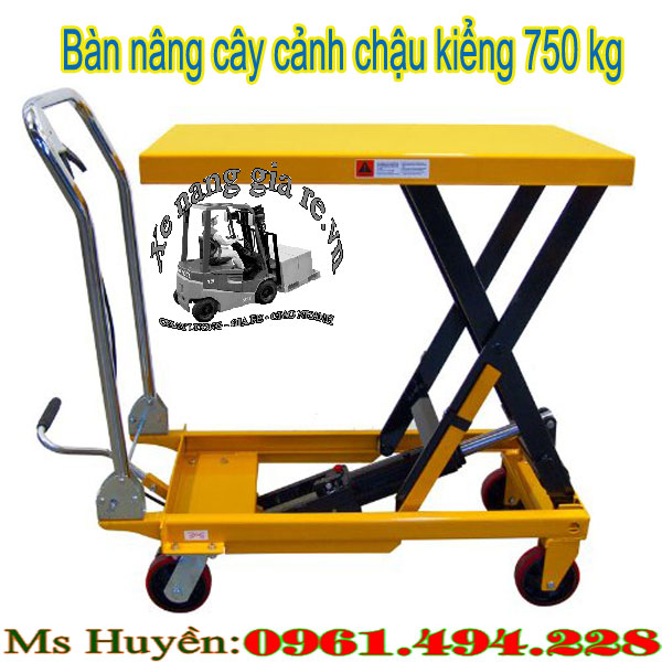 ban-nang-cay-canh-chau-kieng-moi
