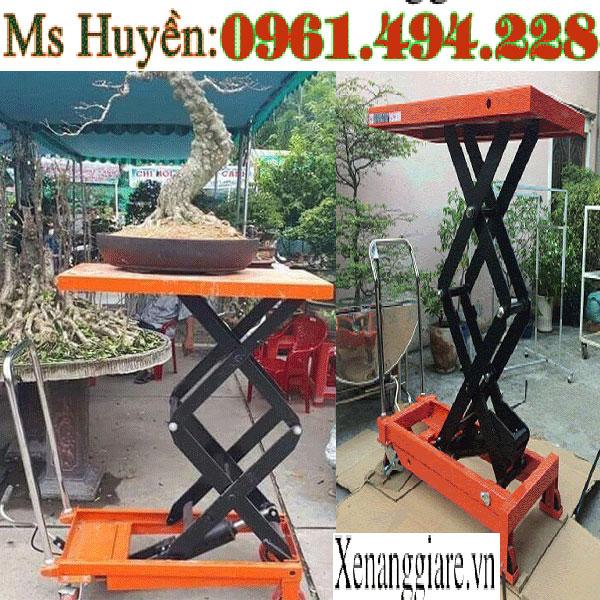 xe nâng cây cảnh tại Nam Định